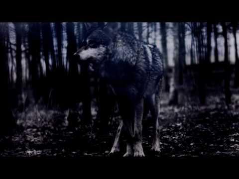 BigBoss - BigBoss - Solitude ( Official video )