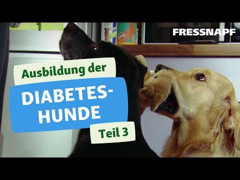 Die Diagnose von Schwangerschaftsdiabetes