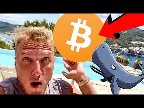 Šiandien 1 bitcoin kaina