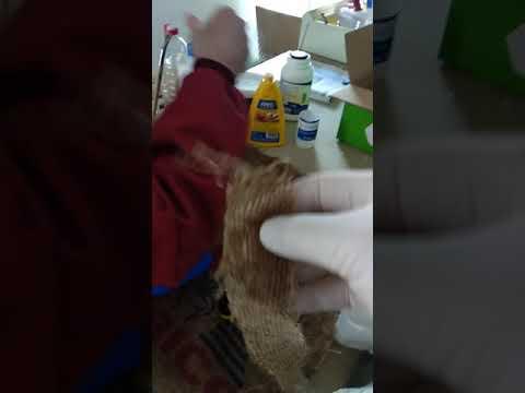 Restauración alpillera