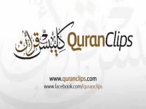 Muhammad Salah Nafea - Surah Nuh (71) With English Translation