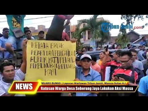 Ratusan Warga Desa Seberang Jaya Lakukan Aksi Massa