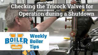 Checking the Tricock Valves for Operation during a Shutdown - Weekly Boiler Tips