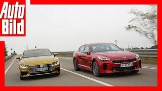 VW Arteon vs Kia Stinger (Goldenes Lenkrad 2017) Test/Review/Details