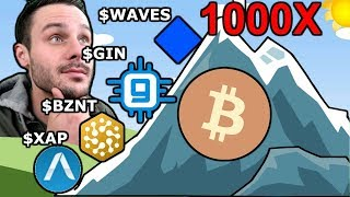 Path to 1000X: Masternodes: $GIN $XAP | Platforms: $WAVES $BZNT--Underrated Cryptos