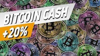 Hardfork bei Bitcoin Cash - jetzt kaufen?