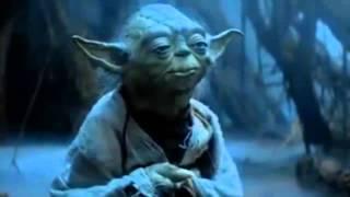 Yoda, le coach par excellence