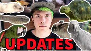 IMPORTANT UPDATES ON MY ANIMALS!