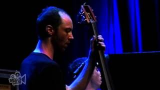 The Cinematic Orchestra - As The Stars Fall | Live in Sydney | Moshcam