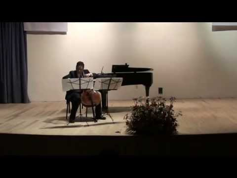 Marcelo Zigaran, Cello