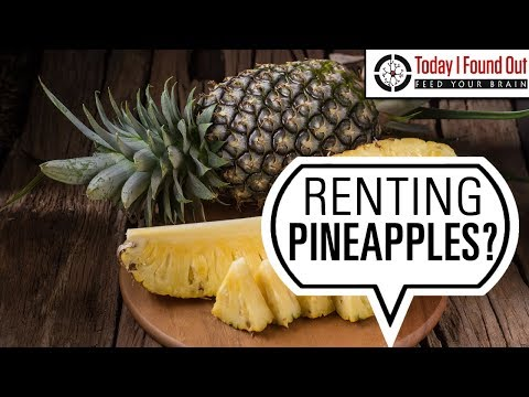 That Time When the Elite of the Western World Rented Pineapples by the Hour