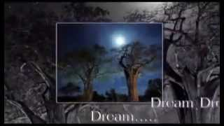 All I Have To Do Is Dream : The Everly Brothers