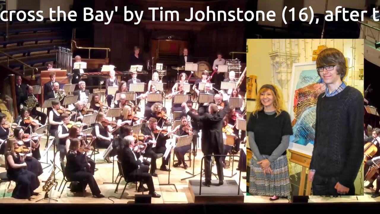 Aldworth Philharmonic Orchestra (2016) APO Pictures