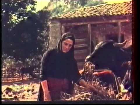 ოთარაანთ ქვრივი (1957)