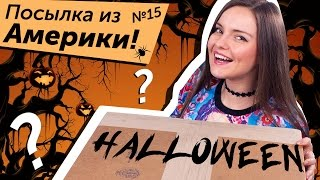 Посылка из Америки №15: Эксклюзив Monster High, Integrity Toys MLP (My Little Pony), Ever After High