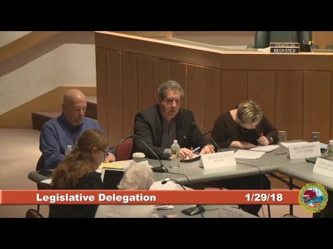 Legislative Delegation 1.29.2018