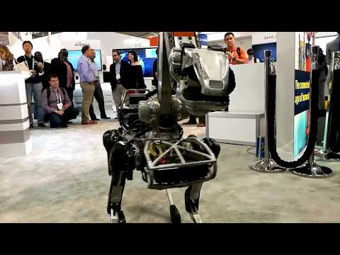 BOSTON DYNAMICS SPOTMINI  Must see!
