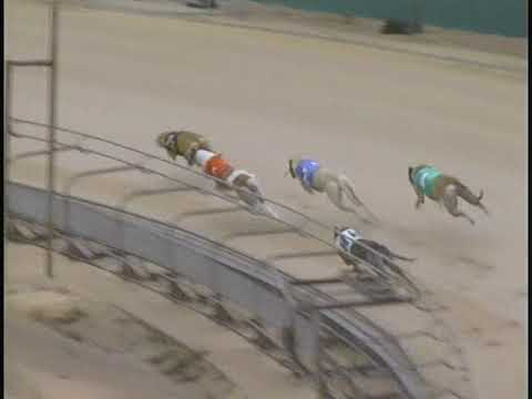 2017 Fall Nationals Tuesday Race Replays
