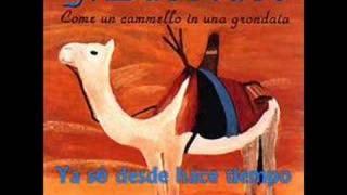 76. Como un camello en un canalón, de Franco Battiato