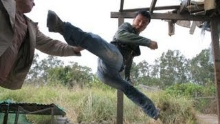 Best fight scenes of FLASH POINT ! (Donnie Yen)