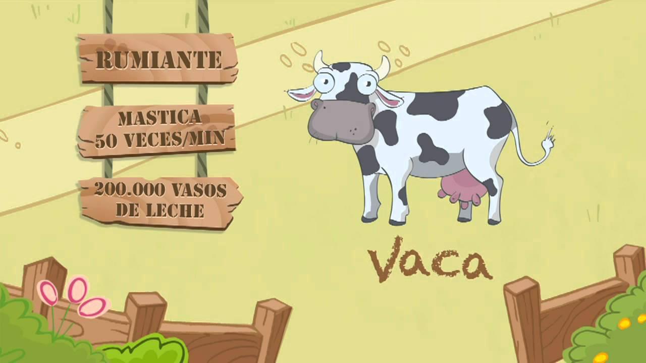 Las características de la VACA