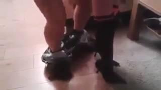 ПРИКОЛ красивый секс НЕ порно  домашнее частное русское видео