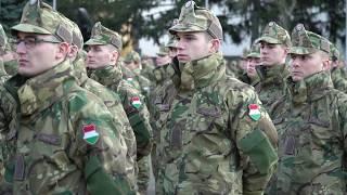 Szentendrei 7 / TV Szentendre / 2020.01.31.