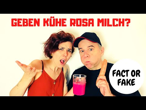 Fact or Fake - Online Quizshow