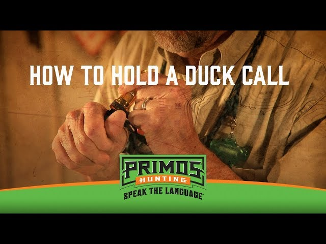 What Type of Duck Call to Buy