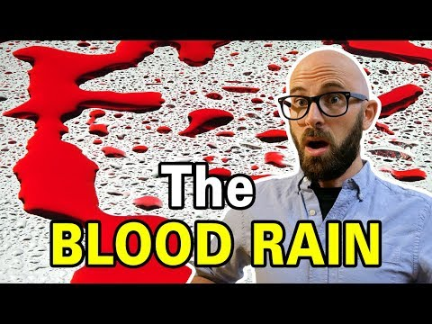 What Caused the Red Rain of Kerala?