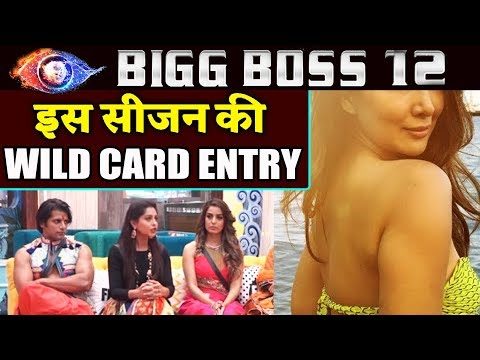 This Bollywood Actress To Make WILD CARD Entry In House? | Bigg Boss 12 Latest News (видео)