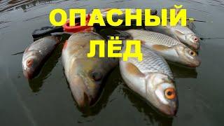 Отчет о рыбалке на угре 2020
