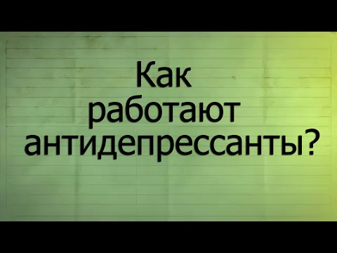 Полина дашкова источник счастья pdf