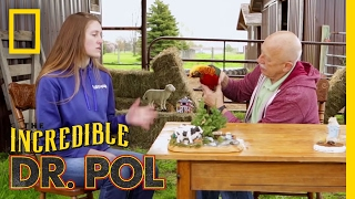 One Pleasant Pheasant - Season 4, Episode 9 | Coffee Break with Dr. Pol