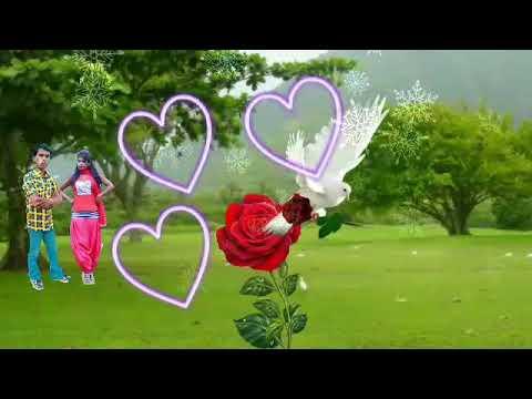 www.com.ashok.kumar new bewafa song 23 february 2018 hindi video song