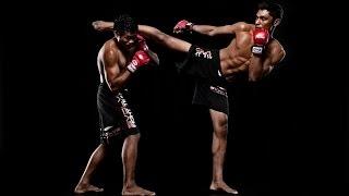 Get MMA Skills! Improve MMA Fighting Skills Subliminal Frequencies Hypnosis Biokinesis UFC