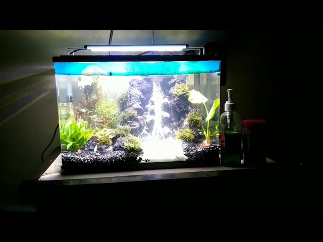 Aquascape air terjun aerator