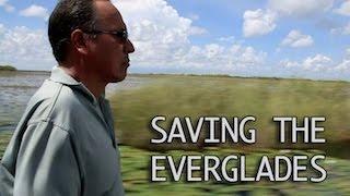 Saving the Everglades