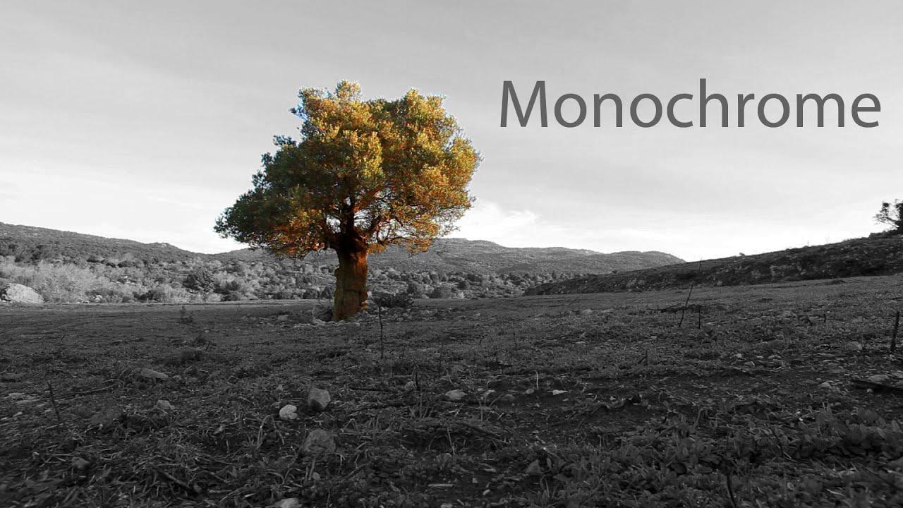 Monochrome (Short Film)
