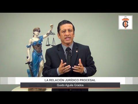 La relación jurídico procesal - Tribuna Constitucional 41 - Guido Aguila Grados