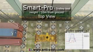 Crane Swing Control - Smart-Pro