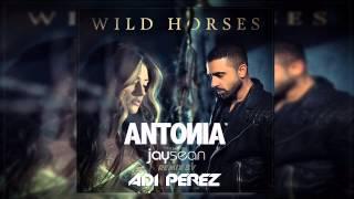 Antonia & Jay Sean - Wild Horses (Adi Perez Remix)