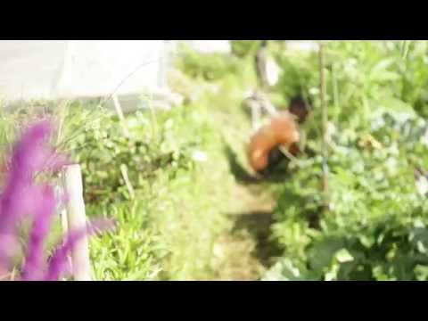 "Help Two ""At Risk"" Teens Learn Organic Farming"