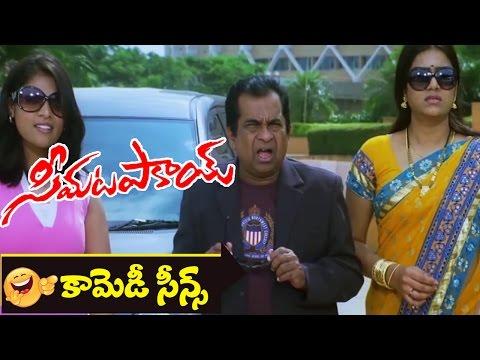 Bhrammanandam Comedy Scene || Seema Tapakai Movie || Allari Naresh, Poorna