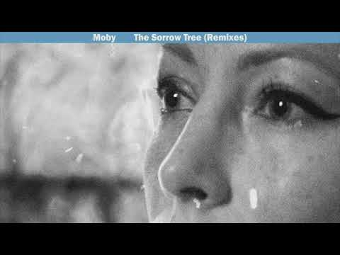 Moby - The Sorrow Tree (Moby's 4 A.m. Mulholland Drive remix)