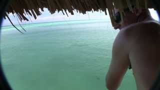 25-30LB AMBERJACK CAUGHT IN CUBA FISHING FROM CAYO GUILLERMO PIER OCTOBER 2010