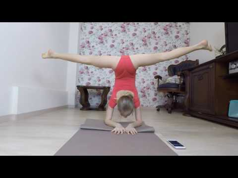 Plank challenge //Split // GYMNASTICS