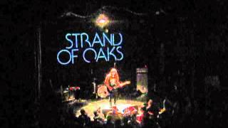 Strand of Oaks - My Wrecking Ball (Ryan Adams Cover) - Bowery Ballroom NYC - 12/04/14