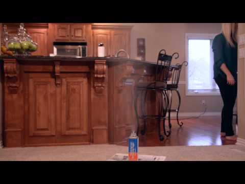 fogger video