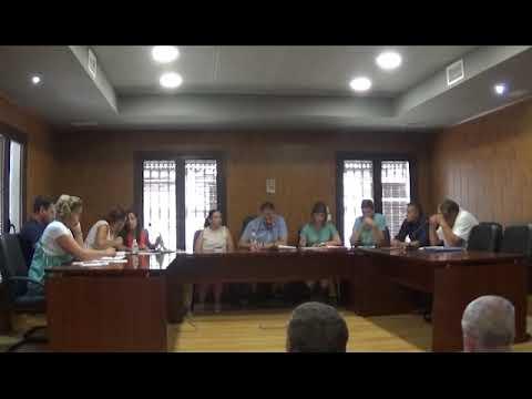 Pleno Extraordinario 17/07/2019 - Ayto. Cañete la Real